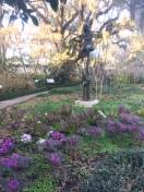 brookgreen-garden