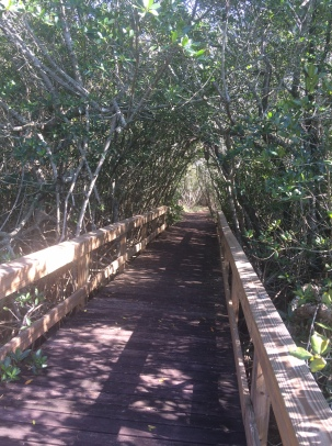 Nature Preserve In Punta Gorda