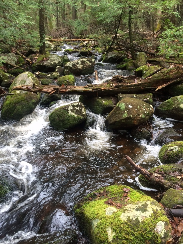 Love the sound of a Spring brook