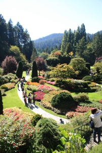 Lots of visitors at Butchart Gardens