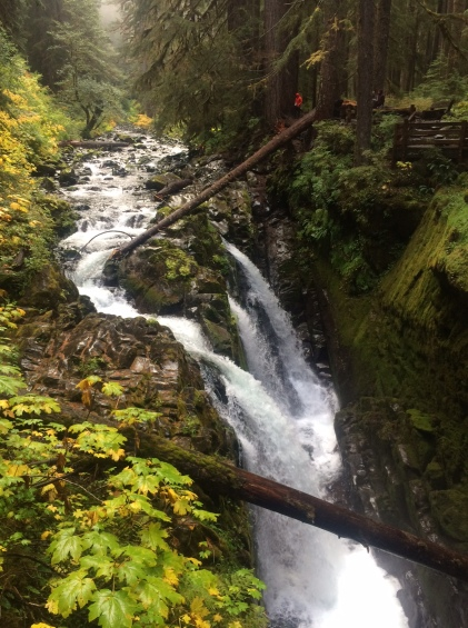 Sol Duc Falls in Autumn